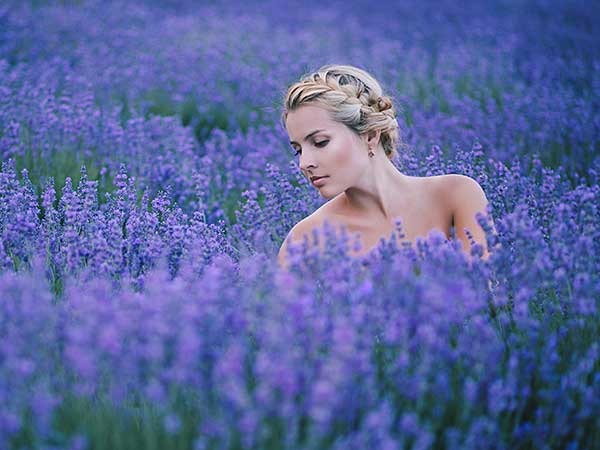 Blonde woman with braids in field of lavender.