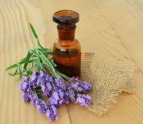 Lavender with Homeopathic Sleep Aid
